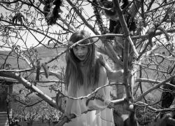 treegirl_cawston