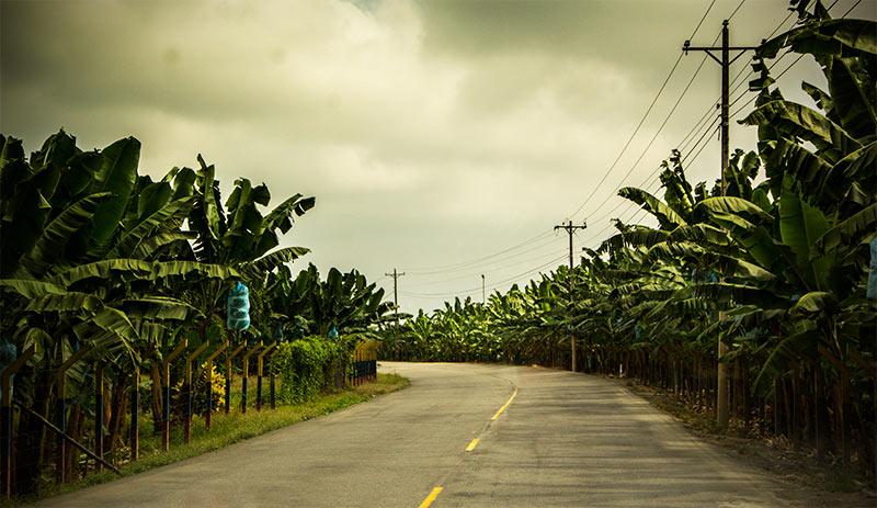 A hundred km along roads like this