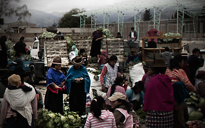 Wholesale vegetables in the Andes.